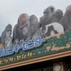日本猴子主题公园