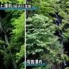 富士宫的多彩四季–美和健康篇