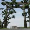 三重県桑名市 桑名石取祭