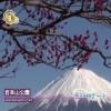 被富士山眷顾的城市–富士市–和富士山相约